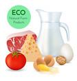 fresh organic food vector image