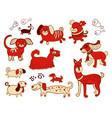 set of cute childish dog vector image