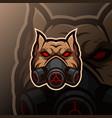 bulldog mascot logo esport vector image vector image