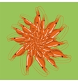 Cooked Red Srimps Tasty Sea Food vector image