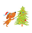 cute cartoon dog decorating christmas tree vector image