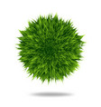 green fluffy pompom or hair ball isolated on white vector image vector image