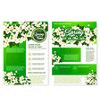 spring flower greeting poster and flyer template vector image vector image