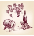 wine collection hand drawn vector image