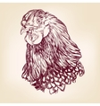 chicken vintage hand drawn vector image vector image