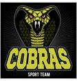 cobras green banner design colorful vector image vector image