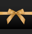 gold bow with ribbonsgift card template vector image