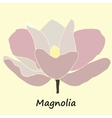 Mognolia flower colored vector image