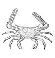 sentinel spinous crab vintage vector image vector image