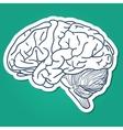 Anatomical brain human organ vector image