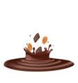 chocolate splash with almond vector image vector image