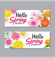 hello spring greeting card banner template with vector image vector image