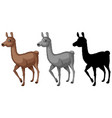 set of alpaca character vector image