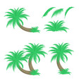 set of palm trees and leafs vector image vector image