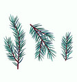 set of simple fir branches in turquoise shade vector image