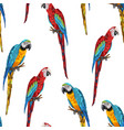 tropical seamless pattern with parrots vector image vector image