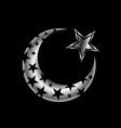 the islamic star vector image