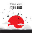 animal world flying birds cloud and red sun backgr vector image
