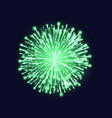 firework isolated beautiful green firework on vector image vector image