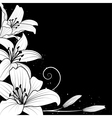 lily on black vector image vector image