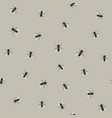 seamless pattern with flies vector image vector image