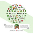 vegetables card concept organic shop natural vector image vector image