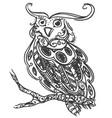 hand drawn sketch of owl bird vector image vector image