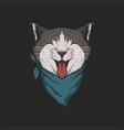 head cat bandana vector image vector image