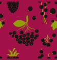 seamless pattern with black berries vector image vector image