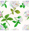 seamless texture multicolored roses and buds vector image vector image