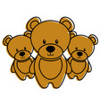 three teddy bears cute animal toy vector image
