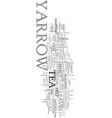 yarrow tea achillea millefolium text word cloud vector image vector image