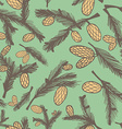 Fir pine cone seamless pattern vector image