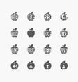 collection of education apple icons on white vector image