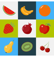 Fruits Set Healthy Food Vegeterian Food Healthy vector image vector image