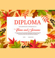 kids diploma educational certificate for school vector image vector image