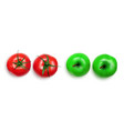realistic fresh tomato with green twig and apple vector image