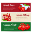 tomato sauce design set banners vector image vector image
