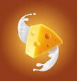 triangular piece of cheese in milk splash vector image