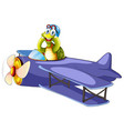 turtle riding vintage airplane vector image vector image