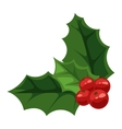 Christmas berry vector image vector image