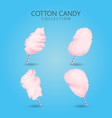 cotton candy cartoon sweet sugar food vector image vector image