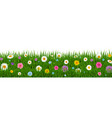 green grass and flowers border vector image vector image