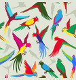 seamless pattern with colorful parrot jungle vector image