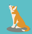 dog puppy husky flat style vector image
