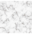 marble realistic texture white marble rock vector image