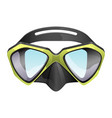 professional diving mask snorkeling vector image