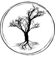 black and white drawing deciduous tree black vector image vector image