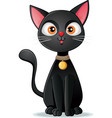black cat on white background cartoon illus vector image