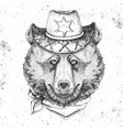 retro hipster animal bear hand drawing muzzle vector image vector image